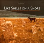 shells027